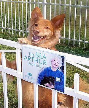 Bea Arthur Dog Park