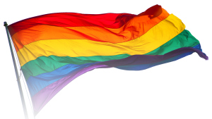 The rainbow flag, symbol of the LGBT social movement. Image by Benson Kua.
